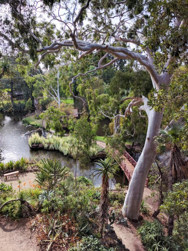 Rippon_Lea_Gardens_Elsternwick_Melbourne